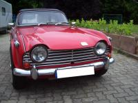 TR 250 rot